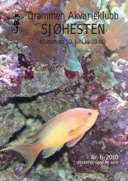 Juni 2010.pdf - Norsk Akvarieforbund