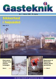 Gasteknik nr. 1, februar 2006 [PDF] - Dansk Gas Forening