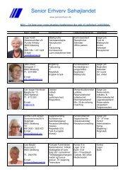 Se den nyeste liste med aktive jobsøgere - Senior Erhverv Danmark