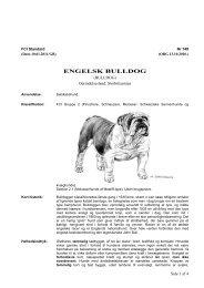 PDF-file: Engelsk bulldog - Dansk Kennel Klub