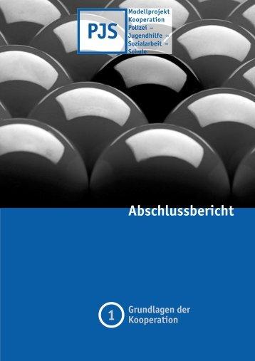 """Abschlussbericht """" Grundlagen der Kooperation"""" - Jugendamt der ..."""