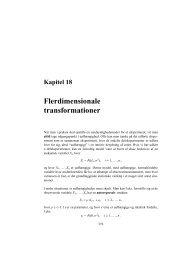 Kapitel 18 Flerdimensionale transformationer