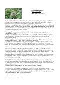 SKOTLAND - Dumas-Johansen Specialrejser - Page 6