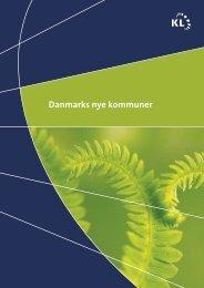 Danmarks nye kommuner - 6 rigtige