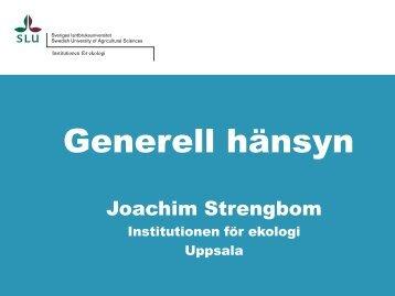 Joachim Strengbom_Hänsynsytor.pdf - Skogsstyrelsen