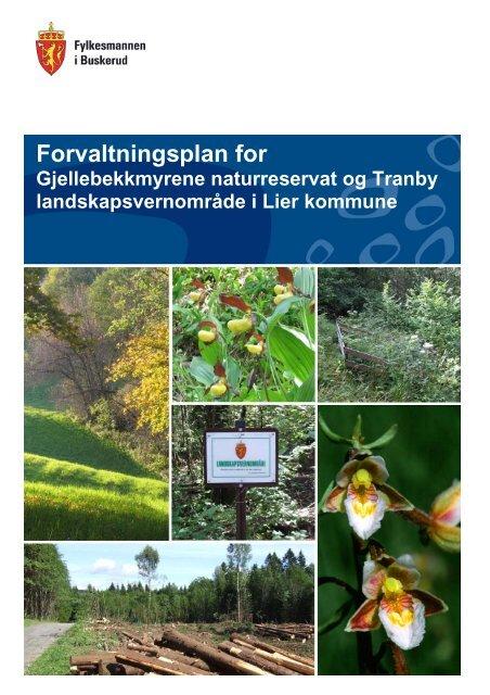Forvaltningsplan for Gjellebekkmyrene ... - Fylkesmannen.no