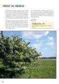 Ordet og Ordene - Ormslev Kirke - Page 2