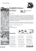 Risten4 200807a.indd - Stenlillespejderne Laurentius - Page 6