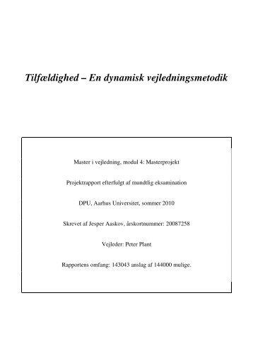 Tilfældighed – En dynamisk vejledningsmetodik - Videncenter for ...