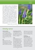 Kirkenyt 1 2012 - Seden Kirke - Page 3