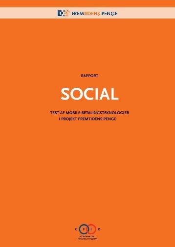 Rapport 5 - Social (PDF) - Fremtidens penge