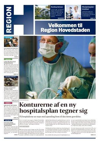 Konturerne af en ny hospitalsplan tegner sig - Kong Kuglepen