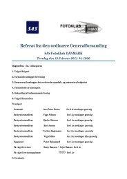 Generalforsamling 2011 - SAS Klub
