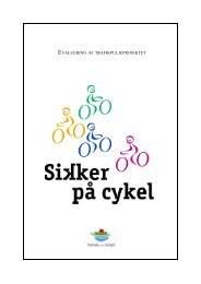 Word Pro - Rapport - Cykelviden