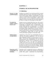 Kapitel I - De Økonomiske Råd