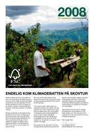 ÅRSBERETNING 2008 - FSC - Forest Stewardship Council
