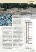 danmarks geologiske udvikling fra 65 til 2,6 mio. år før nu - Page 3