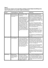 Bilag 3. Oversigt over opgaver med væsentlige snitflader mellem ...