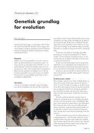 (2): Genetisk grundlag for evolution - Skabelse.dk
