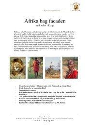 Afrika bag facaden