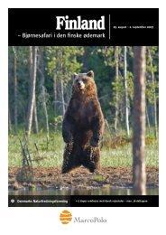 Bjørnesafari i den finske ødemark - Danmarks Naturfredningsforening