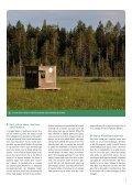 Bjørnesafari i den finske ødemark - Danmarks Naturfredningsforening - Page 5