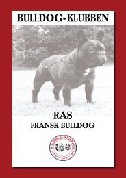 BULLDOG-KLUBBEN RAS - Fransk Bulldog
