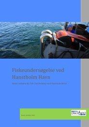 25 Baggrundsrapport Fiskeundersøgelser