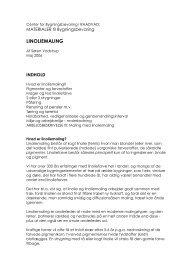 LINOLIEMALING - Center for Bygningsbevaring