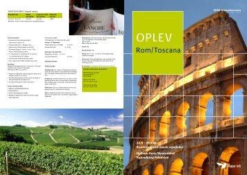 Rom/Toscana - Bilbyen Holbæk