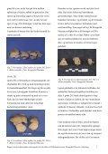Bygherrerapport TAK 1408 - Kroppedal Museum - Page 7