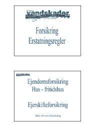 Forsikring - erstatningsregler - Solenergi.dk
