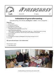Nyhedsbrev 2010 15. år nr. 1 - Hjortspringbådens Laug
