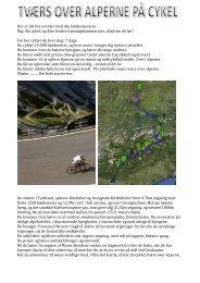 Alpe X landevej - IronKaisa