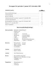 Årsrapport 2002 Bornholms Vindmøllelaug IS