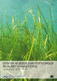 Effekter af øgede kvælstoftilførsler på miljøet i danske fjorde