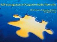 Self-management of Cognitive Radio Networks