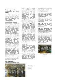 Klik her hvis du vil læse artiklen i printvenlig PDF udgave. (1,5 mb)