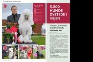 PDF-file: Reportage - Vejen 2012 - Dansk Kennel Klub