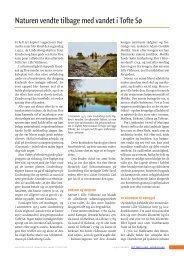 Naturen vendte tilbage med vandet i Tofte Sø - Det tabte land