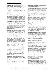 Ordbog som PDF - Dannebrog
