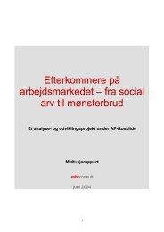 Efterkommere på arbejdsmarkedet - Kompetenceafklaring af ...
