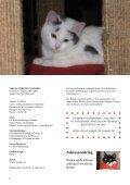 Her kan du lese vårt Sommerblad fra år 2012 - Dyrenes Velferd - Page 2