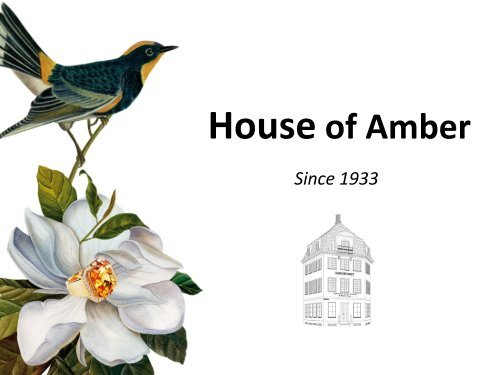 We want to be the leading amber jewelry brand in Northern Europe ...