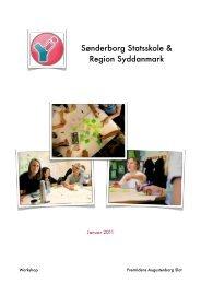 Sønderborg Statsskole & Region Syddanmark