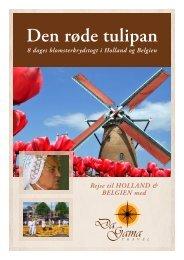 Den røde tulipan - DaGama Travel