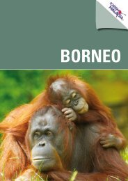 Borneo katalog - Jesper Hannibal