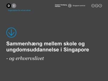 Sammenhæng mellem skole og ungdomsuddannelse i Singapore