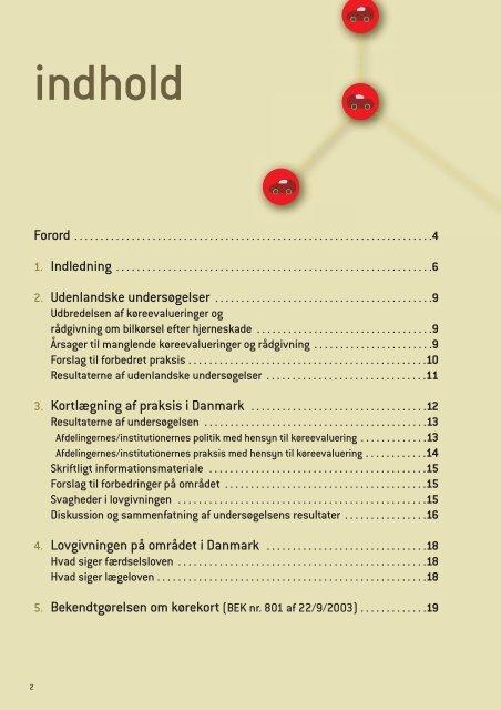 Hjerneskade og kørekort - Servicestyrelsen