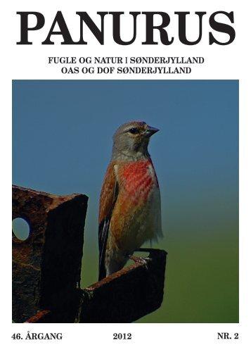 panurus - Ornitologisk forening for Als og Sundeved